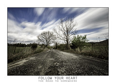 The Road To Somewhere (TGB Filmography) Tags: backroads follow sky slowshutter longexposure trees roads blessed landscape tennessee countryside clouds