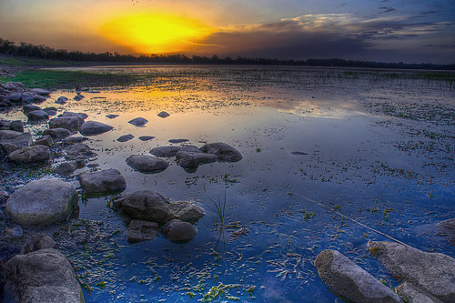 Sukhna lake sunset