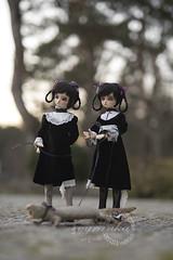 under the sun (cyranka) Tags: talesbycyranka bjd photoart cosette twins notdoll
