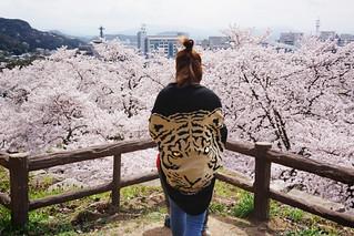 Japan, Tiger Woman