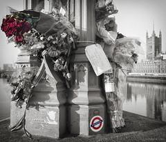 _1160977_2-Edit-Edit (louisberk.com) Tags: hopenothate westminsterbridge memorial housesofparliament memory london uk no people flowers tributes