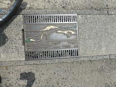 Fukushima gratings-2 (Stop carbon pollution) Tags: japan 日本 honshuu 本州 touhoku 東北 fukushimaken 福島県 manhole