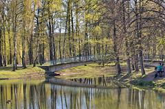 DSC07738 (igor_shumega) Tags: лес природа пейзаж парк озеро отдых мост дерево отражение