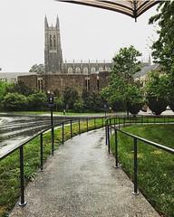 Rain or shine, @dukechapel is a stunner. ☔️😍 #pictureduke #dukeuniversity // PC: @isabonatto1 (Duke University) Tags: ifttt instagram duke university