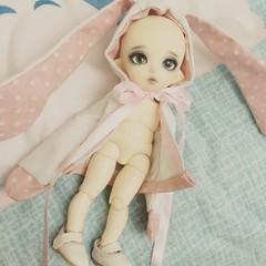 Boo (Dollyta_bjd) Tags: pukifee luna dollfairyland bjd doll cute kawaii tiny lati dollyta rabit usagi conejo pastel sewing
