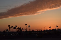 2017-04-16_10-22-10 (Thirsty Hrothgar) Tags: sunset phoenix airport clouds palms urban arizona