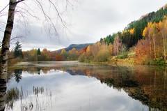 Polney Loch (eric robb niven) Tags: ericrobbniven scotland dunkeld dundee landscape autumn perthshire