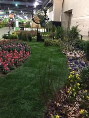 2017-03-10_9391i_amand (lblanchard) Tags: 2017flowershow displaygarden amand