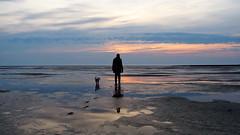 Wattenmeer / Nordsee (_BSnake_) Tags: wattenmeer meer ocean see sunset sundawn sonnenuntergang watt schleswighostein nordsee nordsea nordfriesland nordstrand spiegelung hund mensch sky wolken wasser spiegel sonne