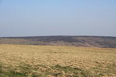 Grass (My photos live here) Tags: stanage edge derbyshire england high peak district national park midlands canon eos 1000d hathersage granite escarpment