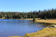 Deep Lake Trail-41.jpg (Just Trails) Tags: scenic wyoming snowyrange deeplake medicinebownationalforest deeplaketrail
