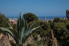 DSC00247_s (AndiP66) Tags: ocean barcelona park city sea spain meer view sony stadt gaudi aussicht parc antoni spanien barcelone güell espangne andreaspeters rx100ii