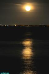 Malibu9:15PM (mcshots) Tags: ocean california city travel sea usa moon wet water night reflections lights coast stock malibu luna fullmoon socal moonrise moonlight mcshots swells springtime losangelescounty surfriderstatebeach
