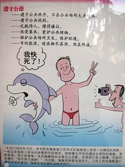 No tormenting dolphins! (MFinChina) Tags: china travel vacation shanghai dolphin no chinese dont speedo manners