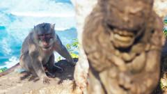 P6070796-14 (25 minutes) Tags: life street travel bali nature indonesia monkey asia f14 olympus snap omd 25mm streetsnap em5 omdem5