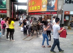 """Shang Xia Jiu • <a style=""""font-size:0.8em;"""" href=""""http://www.flickr.com/photos/81402356@N00/14070602890/"""" target=""""_blank"""">View on Flickr</a>"""