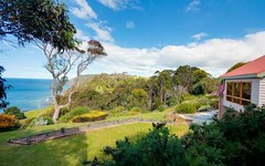 282 Tollymore Road, Table Cape TAS