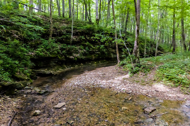 McCormick's Creek State Park - Wolf Cave Nature Preserve - Litten Creek - May 24, 2014