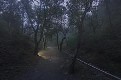 "yes (inhiu) Tags: china longexposure nightphotography lightpainting nikon decay military beijing exploration urbex inhiu 百望山""""baiwangmountain"