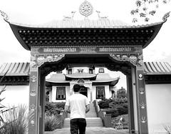 Buddhist temple (Josadaik Alcntara Marques) Tags: life bw arquitetura amazing peace symbol buddha sony faith religion culture style pb bn portal pretoebranco architeture buda beatiful budismo smbolos budista blancenoir templobudista trscoroas passionshots