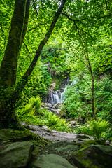 Torc waterfall, co. Kerry, Ireland