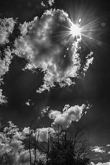 Nubes B/N (cives-expat) Tags: street españa clouds landscape spain paisaje nubes andalusia calles jerezdelafrontera