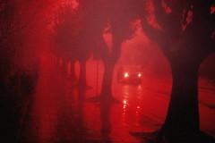 Dias de chuva (Miriam Cardoso de Souza) Tags: sem parar chovechuvachove