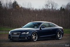 Audi A5 (Evano Gucciardo) Tags: newyork ontario blur landscape nikon focus dof low naturallight automotive sharp editorial audi a5 slammed stance d800 eurocars autoart germancars automotivephotography worldcars automotiveadvertising