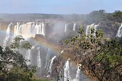 Iguazu-Wasserfälle in Brasilien (wuestenigel) Tags: iguazuwasserfälle brasilien iguacu waterfalls water falls mountain wasser wasserfälle berg