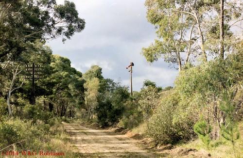 Kareela Road, Penrose