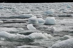 Frozen Baltic Sea - Lule (T Havette) Tags: light sea snow ice frozen erasmus sweden balticsea arctic lapland icy scandinavia suede glace arcticcircle frozenlake lulea frozensea baltique lule laponie erasmusinlule erasmusinlulea
