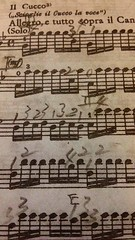 Allegro, e tutto sopra il Canto (Solo) (johnpark258) Tags: summer vivaldi johnpark lequattrostagioni echoparklibrary phonar phonarnation nationunseen
