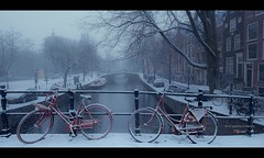 Red In Blue II (Nico Geerlings) Tags: snow winter amsterdam netherlands bikes bike holland canal reguliersgracht red cold freezing snowing ngimages nicogeerlings nicogeerlingsphotography fujifilmxt2 fujinon xf14mm