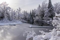 Marais-du-Nord, Québec (Pierre Lemieux) Tags: stonehamettewkesbury québec canada maraisdunord hiver winter eau water river rivière neige snow