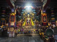 Horroris vacui (Nebelkuss) Tags: india asia bihar bodhgaia bodhgaya monasterio monastery buthan budista budismo buddhist buddhism fujixt1 samyang12f2