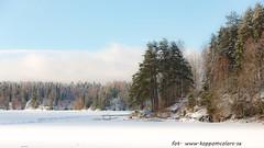 20170222100873 (koppomcolors) Tags: koppomcolors töcksfors winter vinter snö snow värmland varmland sweden sverige scandinavia