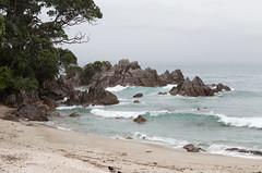 Mount Maunganui Beach, Mount Maunganui, New Zealand (maxunterwegs) Tags: aotearoa bayofplenty beach mountmaunganui mountmaunganuibeach nz neuseeland newzealand nouvellezélande novazelândia nuevazelanda praia strand tauranga