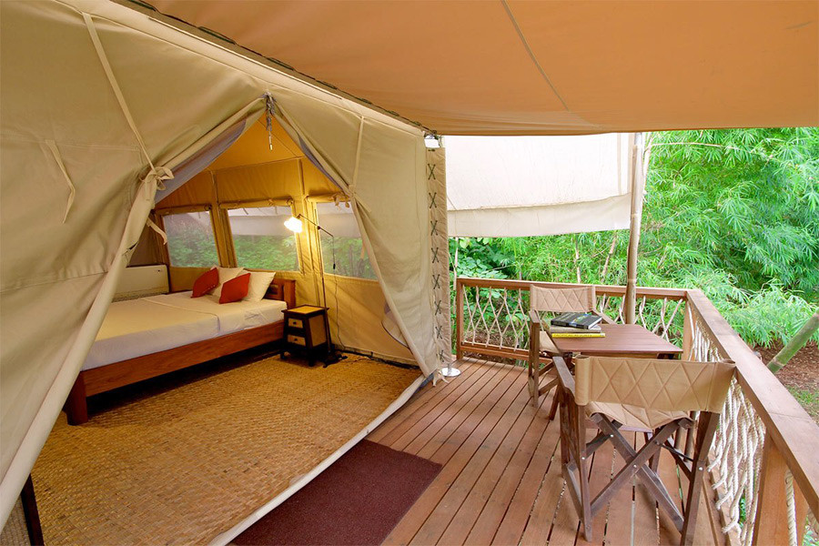 Glamping tents offer comfort amidst natural settings