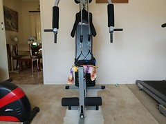 05Apr17 Gym day at my house.  This and the resistance bands comprised most of my activity. #latergram #homegymlife #homegym #2017pad #photoaday