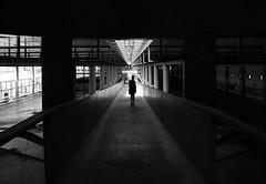 (cherco) Tags: woman walk silhouette silueta light shadow girl perspectiva station estacion alone lonely blancoynegro blackandwhite urban city bus
