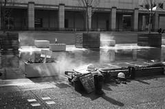 N0282017 (toshyie) Tags: summicron 50mm bessa r3a film photography ilford delta
