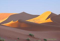 douce magie du désert ©Sossusvlei (philippedaniele) Tags: vividstricking dunes désert namib namibie sable
