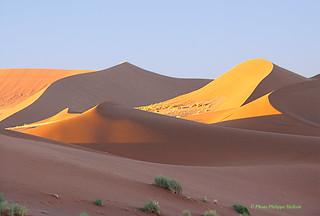 douce magie du désert ©Sossusvlei