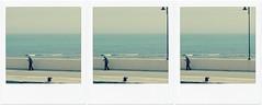 ◘ ◘ ◘ (ghiro1234 [♀]) Tags: leggere camminare porto mare rimini stamattina giornale quotidiano adriatico trittico 3 polaroid poladroid ghiro1234♀ robertaghidossi passeggiata camminata