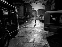 Roma - 2016 (Enzo D.) Tags: biancoenero blackandwhite streephotography backlight bus italia italy olympus roma rome wwwenzodemartinocom lazio it
