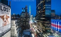 Lost (20170317-DSC08502-Edit) (Michael.Lee.Pics.NYC) Tags: newyork aerial hotelview wyndhamnewyorker 34thstreet lost billboard esb empirestatebuilding msg madisonsquaregarden 1pennplaza sony a7rm2 voigtlanderheliar15mmf45