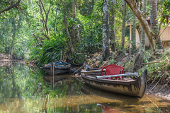 Boats (luke.me.up) Tags: kerala backwaters tourism india cochi cochin nikon d810 water river channel boats