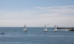 Santa barbara steams wharf (Peggi Siew Lee) Tags: boat ocean beach sailing sky oceanview