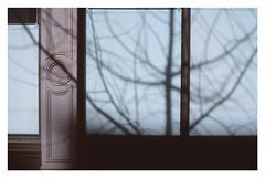 (Michael Raymond Lund) Tags: fujichromeprovia100f slidefilm film 35mm color photography newyorkcity urban nyc manhattan slr 50mm zuiko olympusom4ti