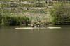 IMGP3457.jpg (Zeilenende) Tags: wasser wassersport ruderer stuttgart neckar maxeythsee